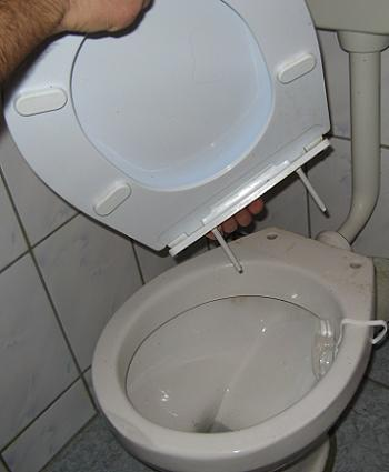 Colac de WC demontat