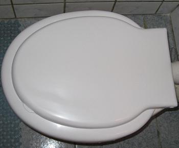Colac de WC nou montat