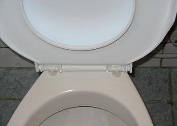 Capac de WC