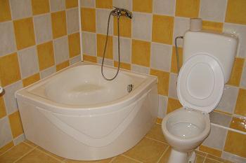 Dus si wc in baie