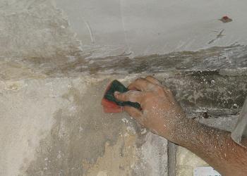 Spalarea peretilor cu solutie antimucegai