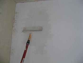 Se umezesc peretii cu trafaletul