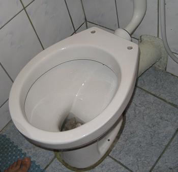 WC-ul de inlocuit si reparat