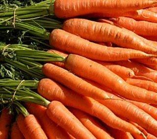 Morcovii legume potrivite pentru orice gradina