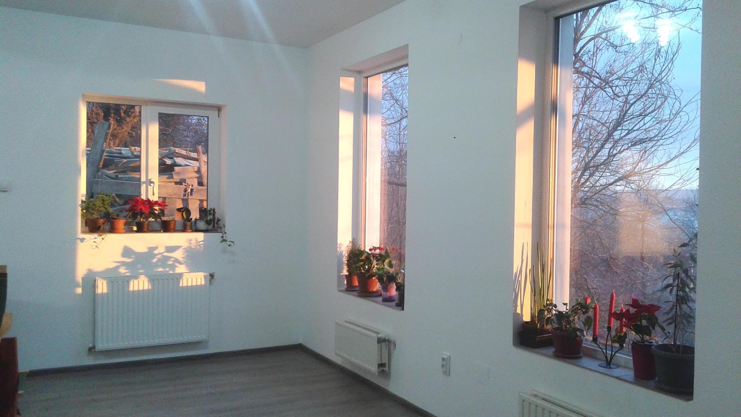 Perete living cu ferestre si usa