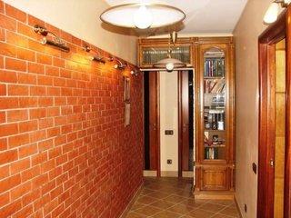 Perete din hol placat cu caramida decorativa