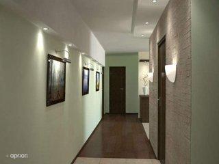 Zugraveala oliv parchet si usi interioare wenge idee de amenajare a unui coridor lung