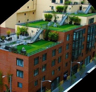 Acoperis verde la bloc cu terasa amenajate
