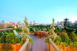 Verde pentru terasa ta plata de pe acoperis