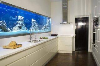 Bucatarie alba cu acvariu in perete