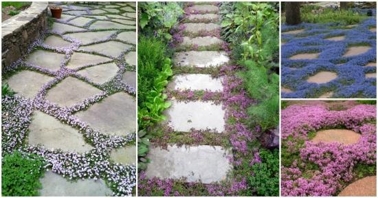 Alei din lespezi de piatra si flori colorate - idei in imagini pe care trebuie sa le vezi