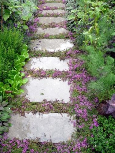 Dale de piatra naturala cu flori printre ele