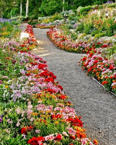 Ronduri de flori pitice si alei de pietris