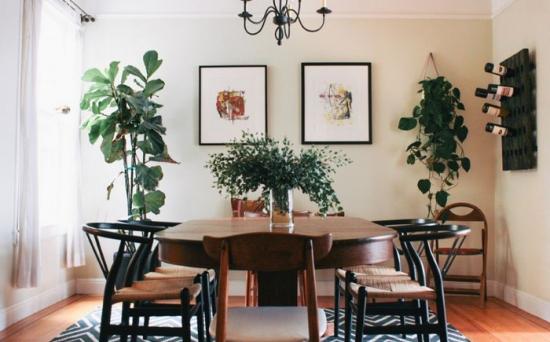 Loc pentru masa decorat cu multe plante decorative