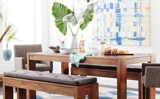 Plante pentru decorul unei camere in stil boho chic