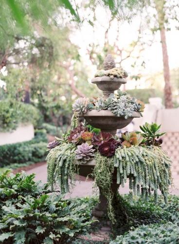 Mobilier gradina cu plante suculente