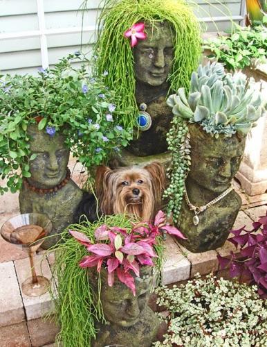 Vase gradina pentru plante suculente