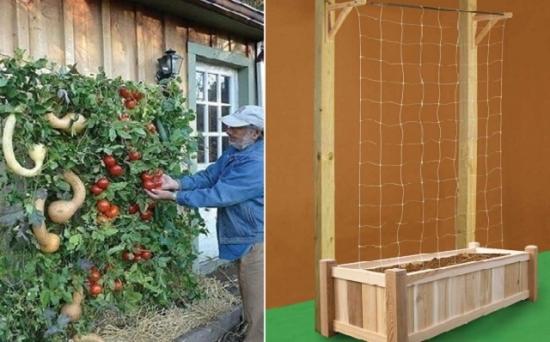 Cum sa iti faci singur o gradina verticala pentru legume - Toate materialele necesare le ai deja acasa