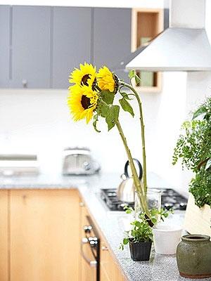 Aranjament floral pentru decor bucatarie