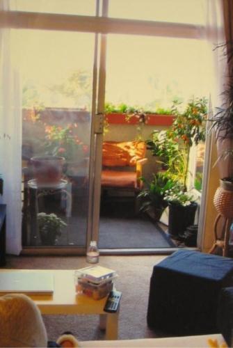 Balcon mic amenajat cu multe flori si folosit ca si spatiu de relaxare