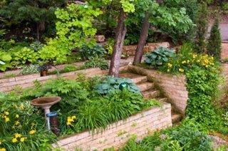 Gradina terasata cu multe plante