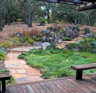 Alee pavata cu roci si gradina cu iarba decorativa