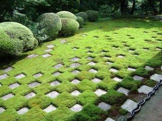 Dale de piatra incrustate in gazon gradina zen