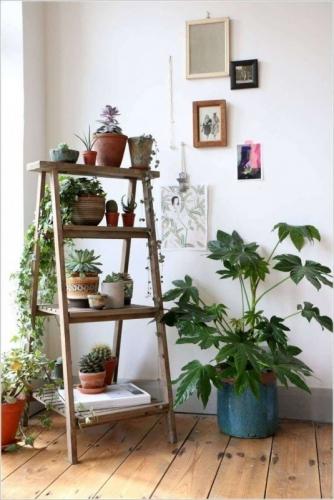 Colt cu plante verzi amenajat in casa