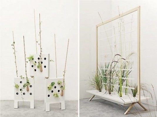 Decor fantastic cu plante