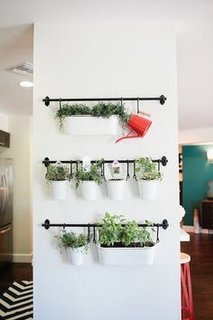 Decoratiune de perete cu plante in ghiveci