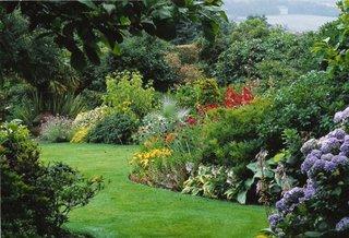 Gradina cu arbusti pitici cu flori