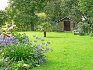 Peluza cu gazon si arbust decorativ cu flori mov