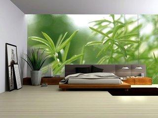 Perete cu fototapet decorativ in dormitor