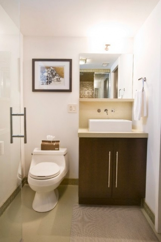 Model ingenios de wc cu bazin mic