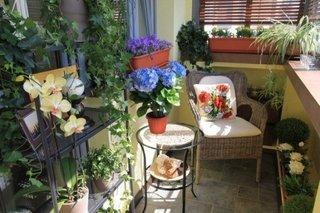 Balcon mic de apartament decorat cu gradinita de flori