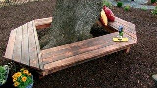 Banca lemn inchis in jurul copacului