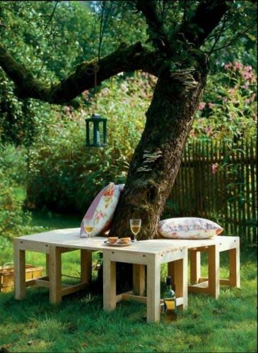 Scaune lemn in jurul copacului