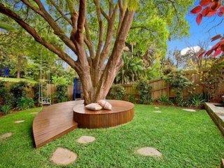 Terasa semicirculara in jurul copacului