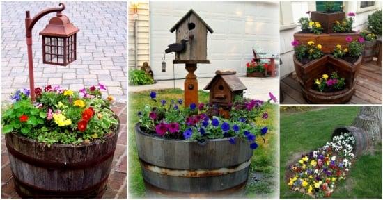 Butoaie vechi din lemn transformate in ghivece de flori super originale - Hai sa le vezi!