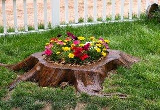 Bustean transformat in jardiniera pentru flori de gradina