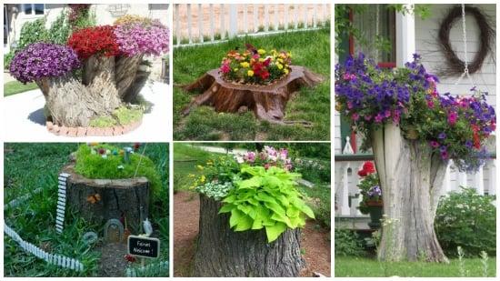 Buturugi transformate in jardiniere unicat - inspiratie in imagini