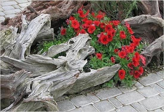 Jardiniera cu petunii rosii