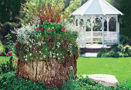 Turn cu flori dintr-o buturuga