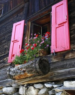Jardiniera rustica suspendata la fereastra