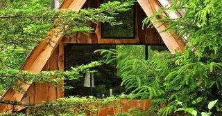 Cabana de lemn de 20 mp