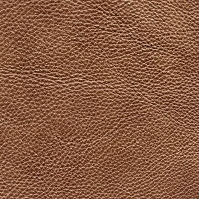 Textura pentru canapea din piele naturala