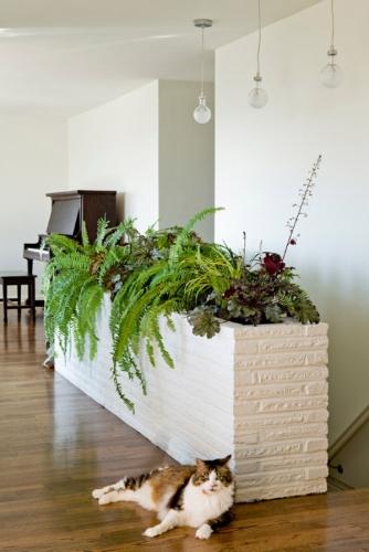 Gradina interioara zidita din caramida