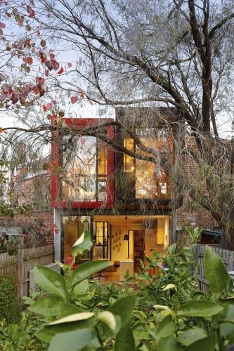 Plante aromatice si artar japonez in curtea casei