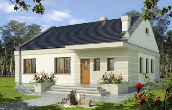 Casa cu 3 dormitoare construita pe un singur nivel