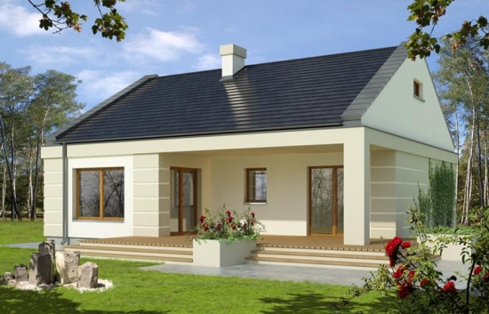 Casa parter cu terasa acoperita